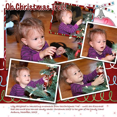 Lily - oh Christmas Tree